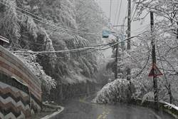 睽違10多年 宜蘭大同鄉四季村也降瑞雪