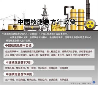 中國證實正規劃建設海上核電站
