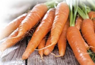 護眼、抗癌、強化精子 吃紅蘿蔔 健康多多