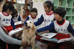 屏大訓練學習輔助犬 陪學童閱讀