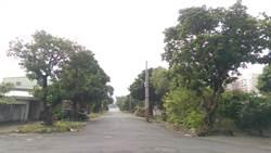 眷村樹木被挖除 農業局要普查