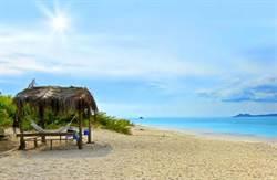 茲卡病毒拉警報 博內爾提升旅遊警示