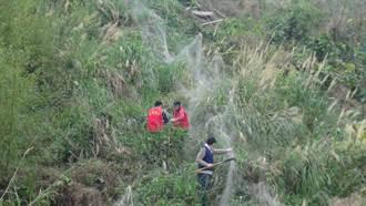 警察上山砍網 意外救援保育類蒼鷹