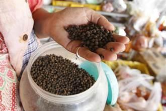 柬埔寨黑胡椒獲歐盟保護 和香檳、帕馬森起司齊名
