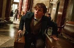 《哈利波特》外傳電影將拍三部曲!上映時間公布