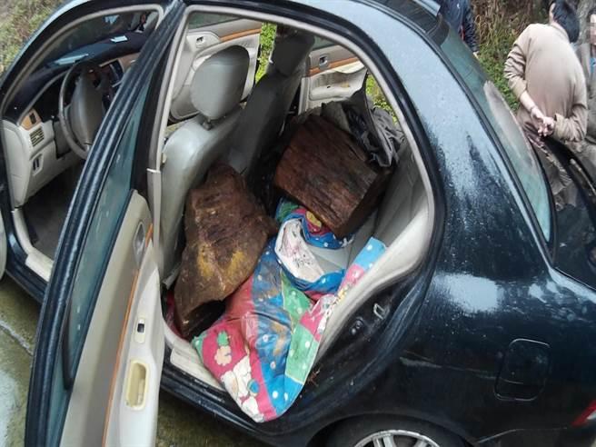 劉姓嫌犯趁低溫、有雨天氣上山盜採牛樟樹材,以為駕黑色轎車載運牛樟贓木,可躲避警方攔查。(黎薇翻攝)