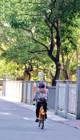 省錢健身好渡假 微笑單車遊台北