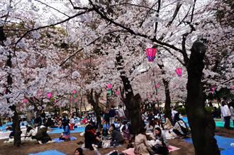 讓台中花博更精彩!林佳龍取經日本花卉管理經驗