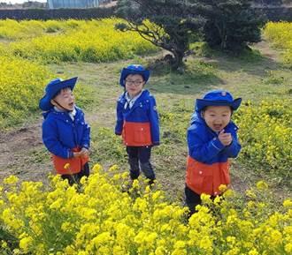 大韓、民國、萬歲樂遊濟州油菜花海 民國賊賊笑萌翻天