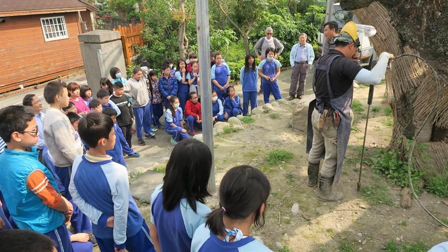 樹醫劉東啟團隊到石岡土牛國小,示範水刀法及氣爆法的救樹技術。(台灣老樹救援協會提供)