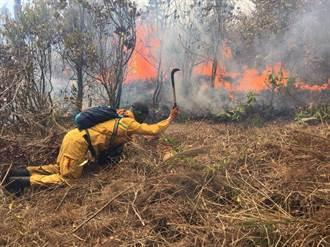 【現場直擊】武陵大火延燒擴至8公頃 直升機滅火中