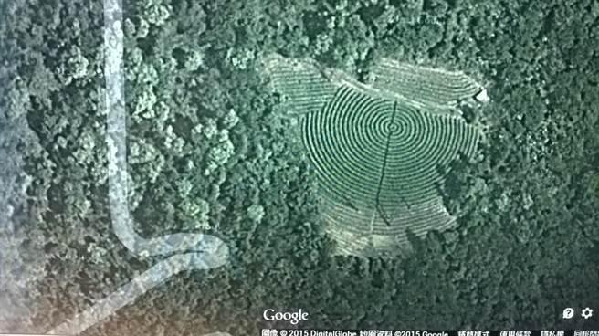 去年4月Google衛星圖茶園狀況。(沈揮勝攝)