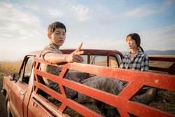 《太陽》陸火紅 韓娛將步台灣後塵被吞噬