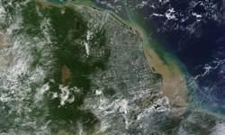 奇!亞馬遜河口發現9300平方公里珊瑚礁