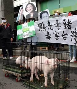 社論-面對美豬進口 新政府不應有「偏安」心態