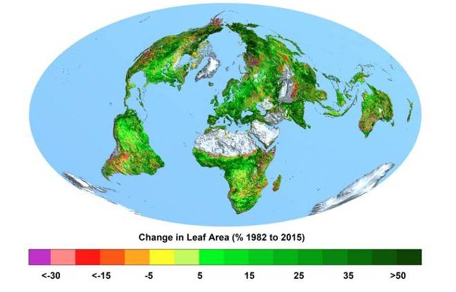研究顯示自1982年自2015年,全球植被顯著成長。(BOSTON UNIVERSITY/Ranga Myneni)