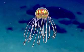 新種水母 長相超像外星人