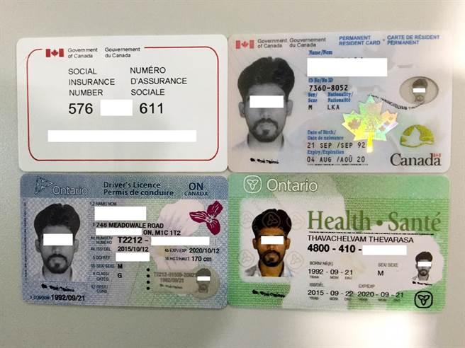 移民署國境事務大隊9日深夜在桃園機場遭執行獵蛇專案時,查獲斯里蘭卡人蛇,起出偽造的加拿大楓葉卡及公民卡、健保卡、駕照等證件。(移民署提供)