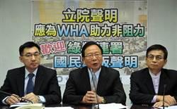 國民黨團發聲明給世衛 強調一中就是中華民國