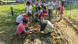 成大高材生投身務農!4年輕新農夫前進校園教學