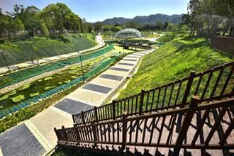 太平坪林森林公園獲金質獎肯定  中市府盼達「海綿城市」目標