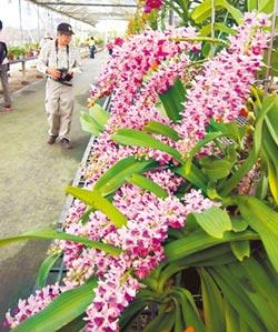 拓展農業生技商機 6月3日開講