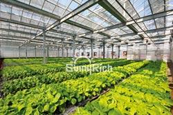 向陽優能 太陽能農棚 再造農業經濟