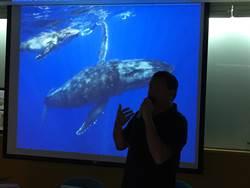 每年只能在水下拍到一、兩次鯨豚 金磊仍樂在其中