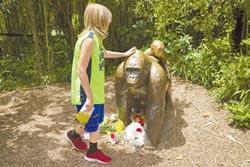 救擅闖柵欄童 美動物園射殺猩猩 犯眾怒
