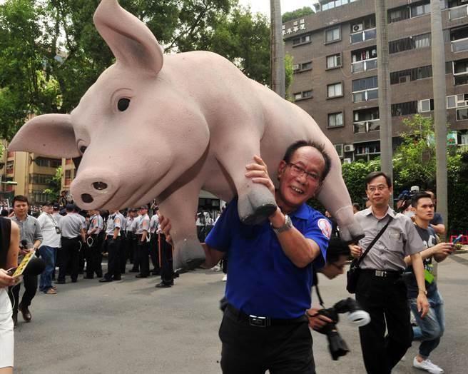 國民黨立委陳超明(見圖)扛著大豬進入議場。(劉宗龍攝)
