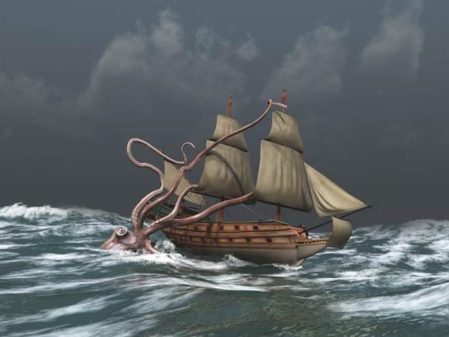 最新研究指出,深海巨型魷魚的長度能達20公尺。(達志影像/Shutterstock)