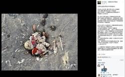 竹圍漁港小燕鷗孵卵遭破壞 愛鳥人士痛心