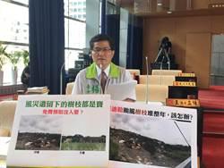 颱風季將來!中市環局將購大型破碎機處理樹枝