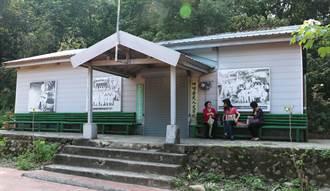 荷苞村復育古坑咖啡