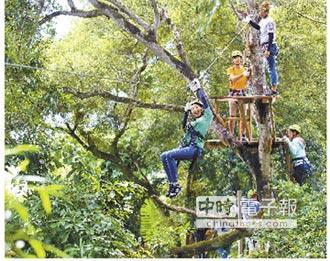 野猴子部落 森林高空探險