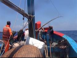 越南漁船入侵!海巡雙艇夾擊帶回1船6人
