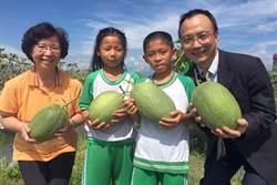 中華郵政助果農賣哈密瓜 所得作公益