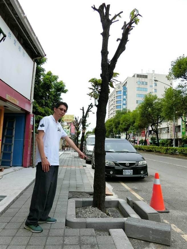 屏東市公所工務課長陳建逸實勘回應,絕無將修剪下來的樹枝變賣。(周綾昀攝)