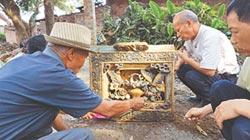 南寧三聖宮毀壞早 彩陶重見天日 50年前為保存文物 才將殘件埋藏水塘