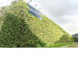巴黎峰會全球抑溫新目標1.5℃ 盛貽綠能植生牆 有效節能減碳
