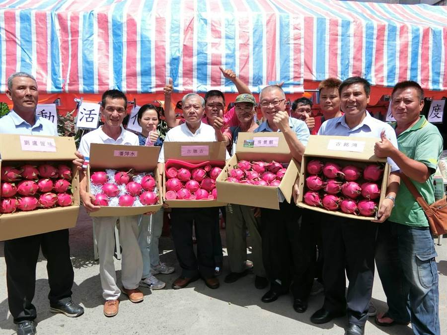 屏東滿州鄉總動員,大力推銷每年為滿州帶來1億2000萬元產值的紅龍果。(周綾昀攝)