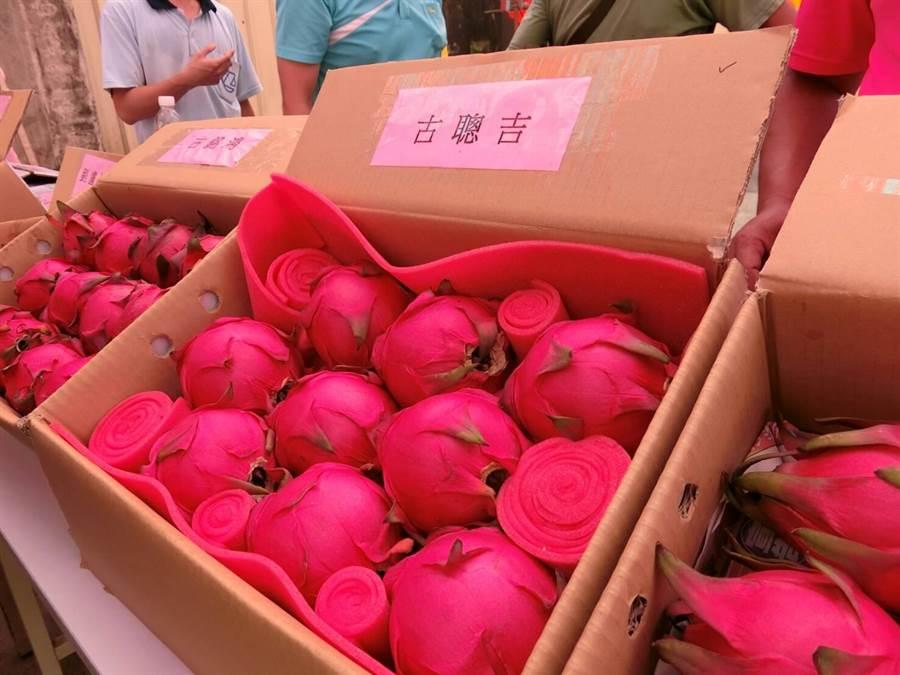 特級的8顆裝火龍果禮盒,要價1200元。(周綾昀攝)