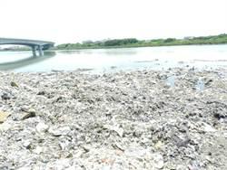 舊濁水溪遭傾倒上百噸廢棄物 警方循線追查中