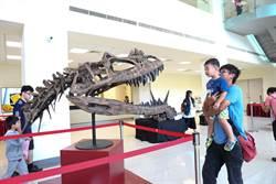 台灣光源剖析 揭恐龍化石神秘面紗