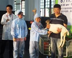 小獸醫師夏令營開跑 愛動物從小扎根