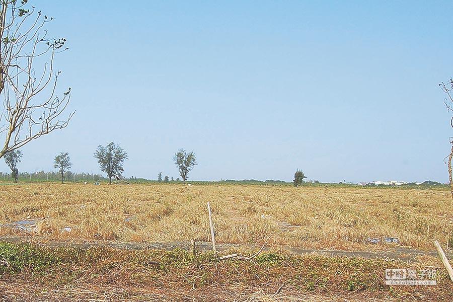 二林精密機械園區面積353公頃,目前荒蕪,縣府下個月要進行二階環評。(吳敏菁攝)