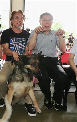 提升搜救犬訓練設施 柯P明年增加預算