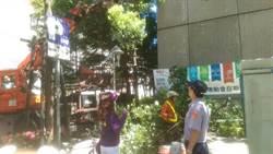 颱風襲台 中一警結合里長防颱整備