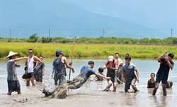 在泥巴裡翻滾 北林三村 找到田