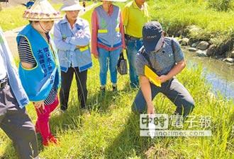 防治紅火蟻 靠居民團結 邀請專家林宗岐上課 用正確方式防疫